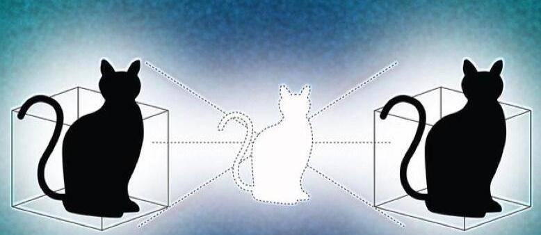 突破性量子力学实验: 两个箱子里的薛丁格的猫同时是死的也是活的 - R站|学习使我快乐! - 2