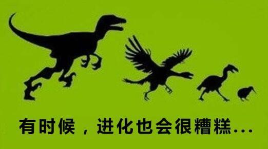 达尔文早知道进化论错了!化石根本没有进化过程 - R站|学习使我快乐! - 2