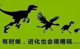 达尔文早知道进化论错了!化石根本没有进化过程