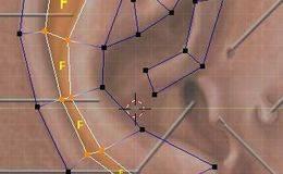 CINEMA 4D入门 (21):C4D 细分曲面 人物建模 布线图