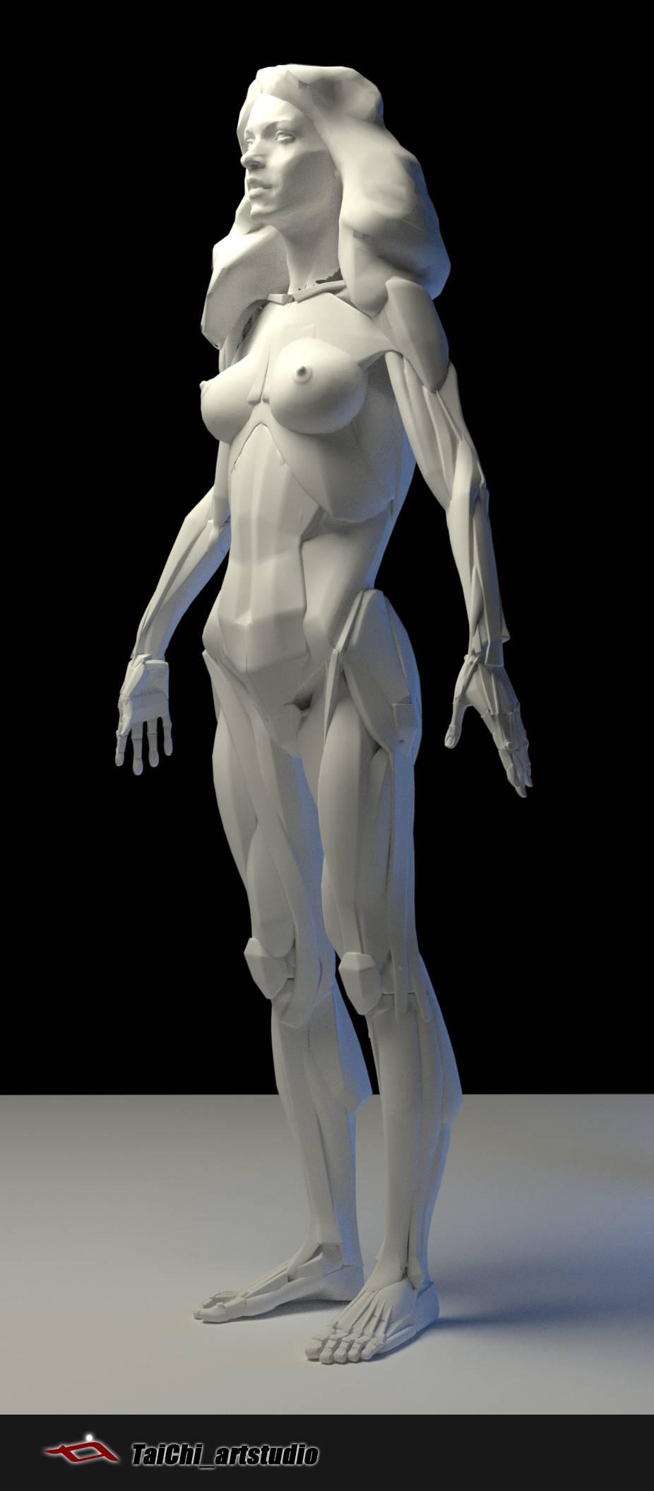 非常不错的人体分面图,美术练习的好东西! - R 站 学习使我快乐! - 5