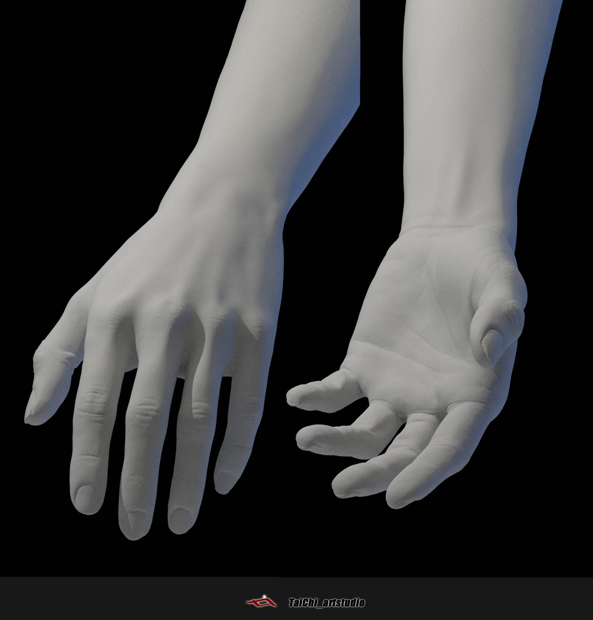 非常不错的人体分面图,美术练习的好东西! - R站|学习使我快乐! - 25