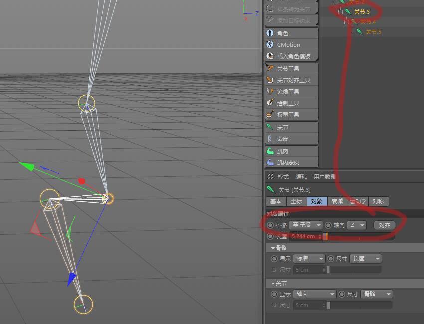 CINEMA 4D入门 (31):C4D 骨骼绑定 之 Z轴对齐 - R站|学习使我快乐! - 3