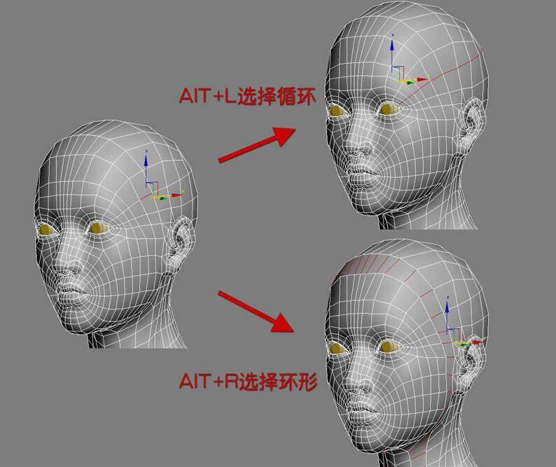 实用:人体3D模型 - 王康慧模型布线理论 - 1(布线前的准备工作) 转载 - R站|学习使我快乐! - 7