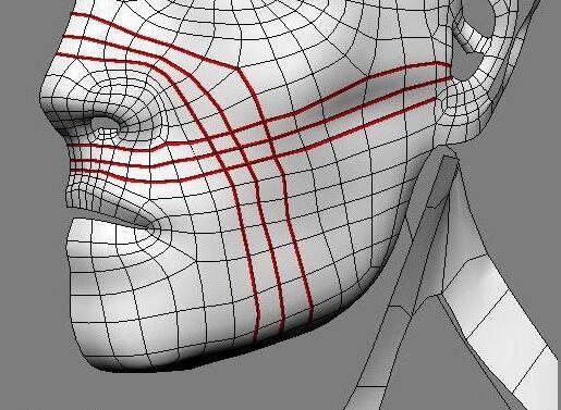实用:人体3D模型 - 王康慧模型布线理论 - 3(具体模型布线实例分析) 转载 - R站|学习使我快乐! - 5