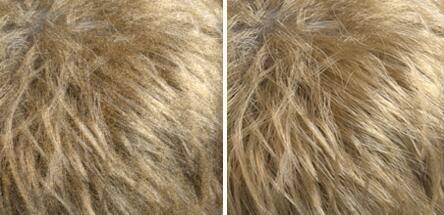 Arnold(C4DToA)阿诺德渲染教程(21) – 标准毛发材质 standard_hair - R站|学习使我快乐! - 2