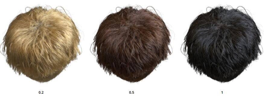 Arnold(C4DToA)阿诺德渲染教程(21) – 标准毛发材质 standard_hair - R站|学习使我快乐! - 5
