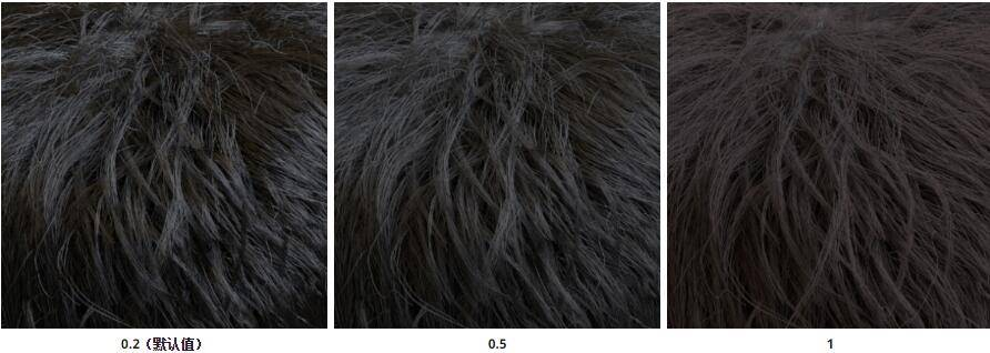 Arnold(C4DToA)阿诺德渲染教程(21) – 标准毛发材质 standard_hair - R站|学习使我快乐! - 7
