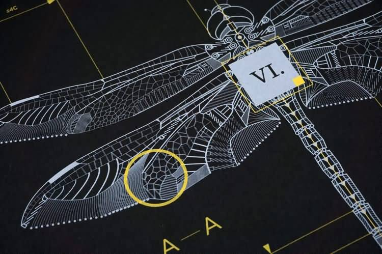 机械昆虫:每一个设计都有自己的蓝图,而我对细线的痴迷 Marton Borzak - R 站|学习使我快乐! - 3