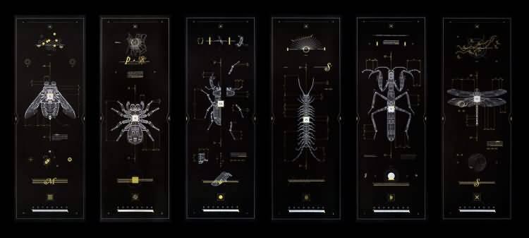 机械昆虫:每一个设计都有自己的蓝图,而我对细线的痴迷 Marton Borzak - R 站|学习使我快乐! - 1