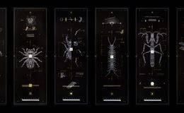 机械昆虫:每一个设计都有自己的蓝图,而我对细线的痴迷 Marton Borzak