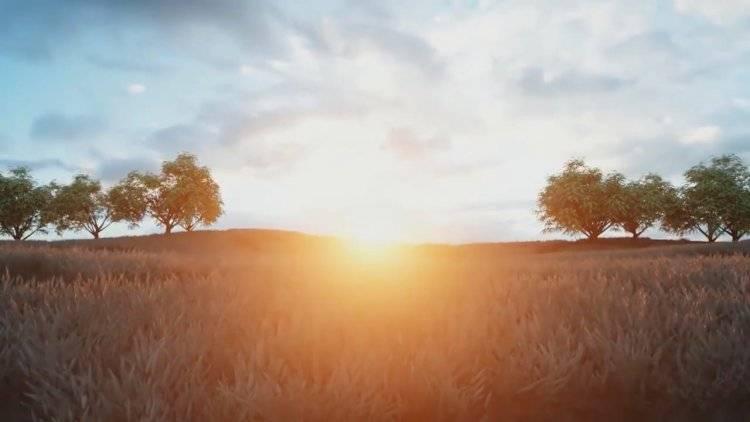 【R站翻译】中文字幕 C4D《Octane宝典》真实的自然环境艺术场景 - 制作渲染核心技法(包含山地\树木\草坪\上帝射线\超大型场景\夜景等) 视频教程 - R站|学习使我快乐! - 1
