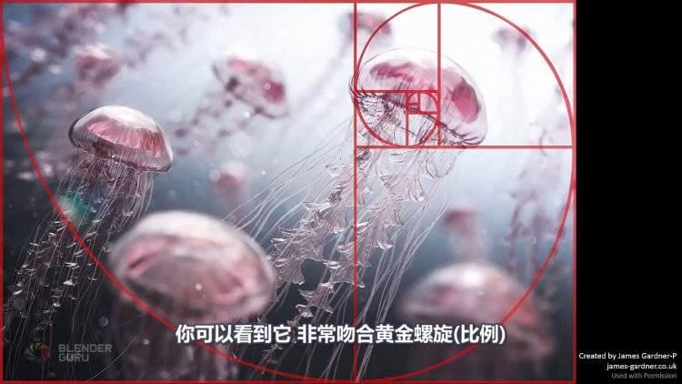【R站出品】中文字幕《构图的秘密》理解构图 Understanding Composition 视频教程 免费下载 - R站|学习使我快乐! - 3