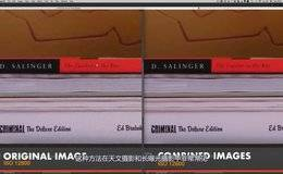 【R站出品】中文字幕《渲染降噪宝典》图像堆栈大法 Create Noise Free Renders 视频教程 免费下载