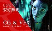 【VIP专享】中文字幕 CG&VFX 《双灯照明的崛起》Lighting Technology 自古红蓝出CP 风靡全球的风格 视频教程