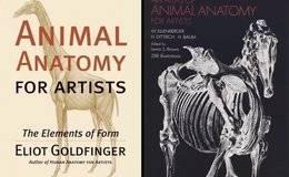 设计书籍:《为艺术家准备的动物解剖图集》An Atlas of Animal Anatomy for Artists PDF版 免费下载