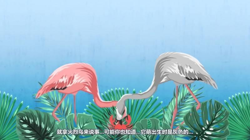 【R站译制】中文字幕 CG&VFX 《为何蓝色在自然界中如此罕见》Blue In Nature 视频教程 免费观看 - R站|学习使我快乐! - 4