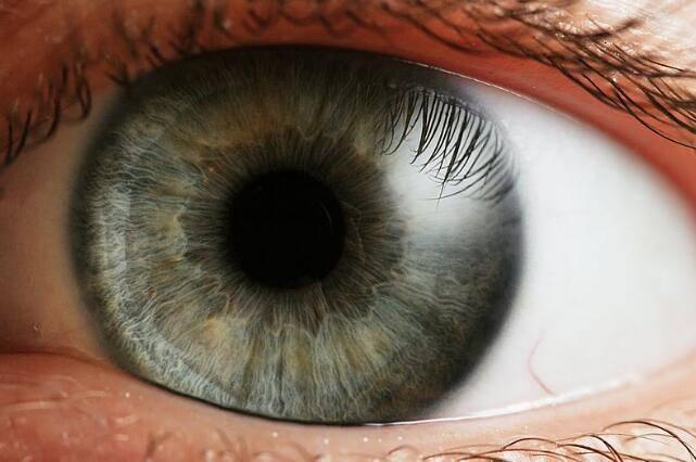 Dr. Optoglass 日志:人类眼睛构成、视觉原理、色彩空间等解析 - R站|学习使我快乐! - 3