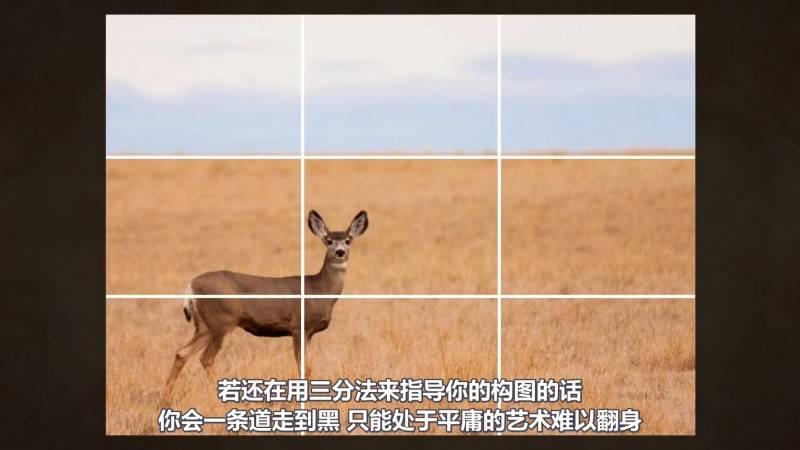 【VIP专享】中文字幕 《构图的秘密》打破三分法的误区 摆脱构图的困扰 Rule of Thirds 视频教程 - R站|学习使我快乐! - 5
