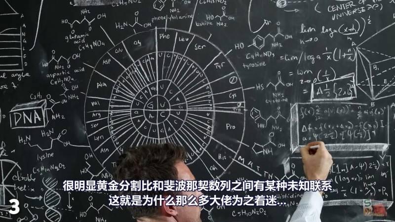【R站译制】中文字幕 CG&VFX 《1.618034为何这么重要?》黄金分割比例、斐波那契数列...感受下数字之美 视频教程 免费观看 - R站|学习使我快乐! - 4
