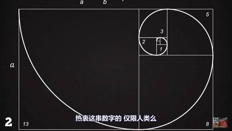 【R站译制】中文字幕 CG&VFX 《1.618034为何这么重要?》黄金分割比例、斐波那契数列...感受下数字之美 视频教程 免费观看 - R站|学习使我快乐! - 5