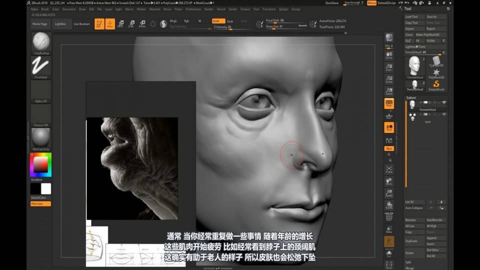 【R站译制】中文字幕 CG&VFX《人物角色宝典》深入人物角色 (建模、布线、拓扑、边线流、毛发、绑定等) 进阶技法  (不断更新ing…) - R站|学习使我快乐! - 42