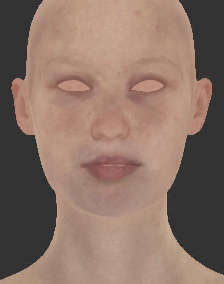 人物角色数字头像  (建模、雕刻、纹理) 创作图文工作流程 (1) 模型、纹理 DIGITAL FACE 全面解析教程 - R站|学习使我快乐! - 5