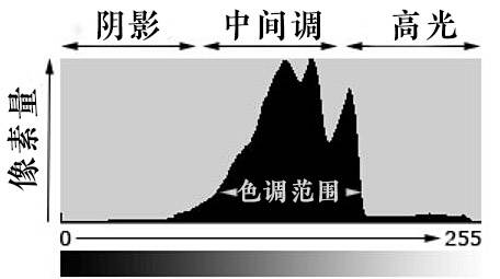 【R站译制】CG&VFX《摄像机指南》一文搞懂直方图 Histograms (色调、对比度、亮度、颜色) 图文教程 - R站|学习使我快乐! - 1
