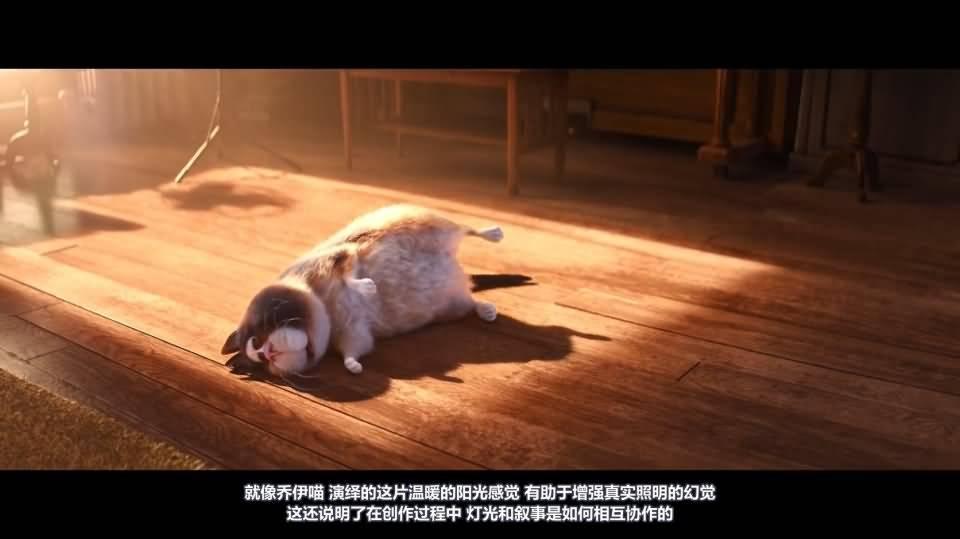【R站译制】CG&VFX 《灯光宝典》心灵奇旅 皮克斯如何用灯光照明来叙事的 Pixar's Soul 视频教程 免费观看 - R站|学习使我快乐! - 6