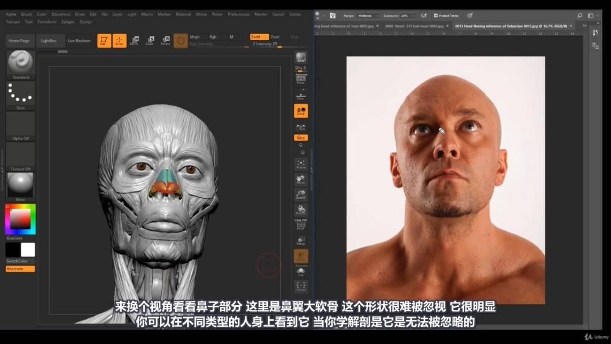 【R站译制】中文字幕 《藝用人體解剖學》人物角色绘画、建模、雕刻必备硬核姿势 Human Anatomy for Artists 视频教程 - R站|学习使我快乐! - 17