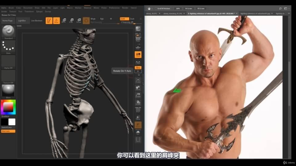 【R站译制】中文字幕 《藝用人體解剖學》人物角色绘画、建模、雕刻必备硬核姿势 Human Anatomy for Artists 视频教程 - R站|学习使我快乐! - 25