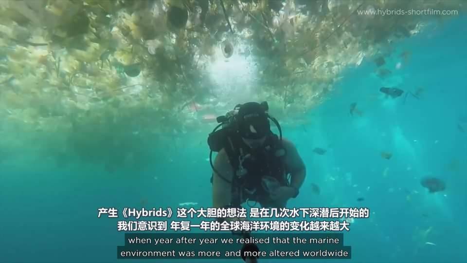 【R站译制】CG&VFX 《Hybrids》 获奖无数的 海洋环境污染环保主题 短片赏析&幕后解析 Arnold渲染 视频教程 免费观看 - R站 学习使我快乐! - 2