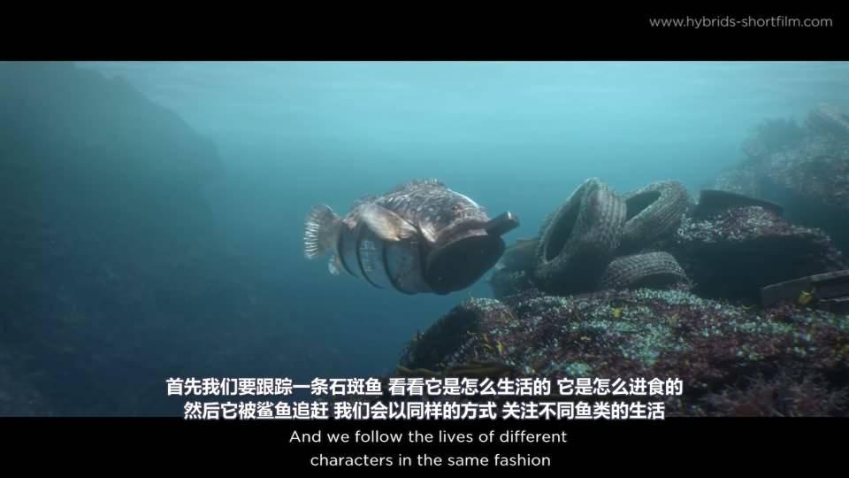 【R站译制】CG&VFX 《Hybrids》 获奖无数的 海洋环境污染环保主题 短片赏析&幕后解析 Arnold渲染 视频教程 免费观看 - R站 学习使我快乐! - 3