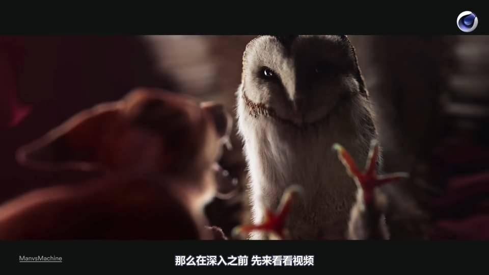 【R站译制】C4D&Arnold教程《动物角色创作解析》让静物画中的动物生动起来 Animals & Still Lifes 视频教程 免费观看 - R站|学习使我快乐! - 4