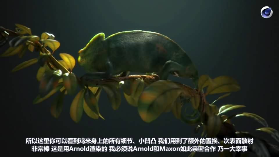 【R站译制】C4D&Arnold教程《动物角色创作解析》让静物画中的动物生动起来 Animals & Still Lifes 视频教程 免费观看 - R站|学习使我快乐! - 7