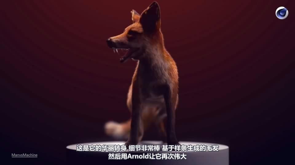 【R站译制】C4D&Arnold教程《动物角色创作解析》让静物画中的动物生动起来 Animals & Still Lifes 视频教程 免费观看 - R站|学习使我快乐! - 9