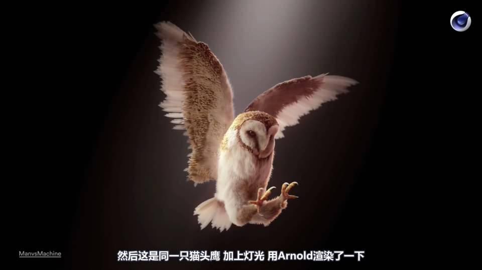 【R站译制】C4D&Arnold教程《动物角色创作解析》让静物画中的动物生动起来 Animals & Still Lifes 视频教程 免费观看 - R站|学习使我快乐! - 11