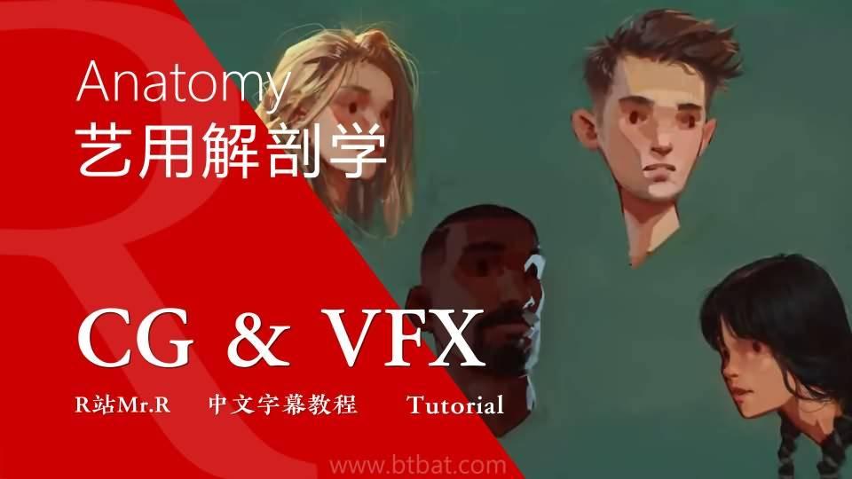 【VIP专享】CG&VFX《艺用解剖学》头发结构及洗剪吹小技巧 Hair 视频教程 免费观看
