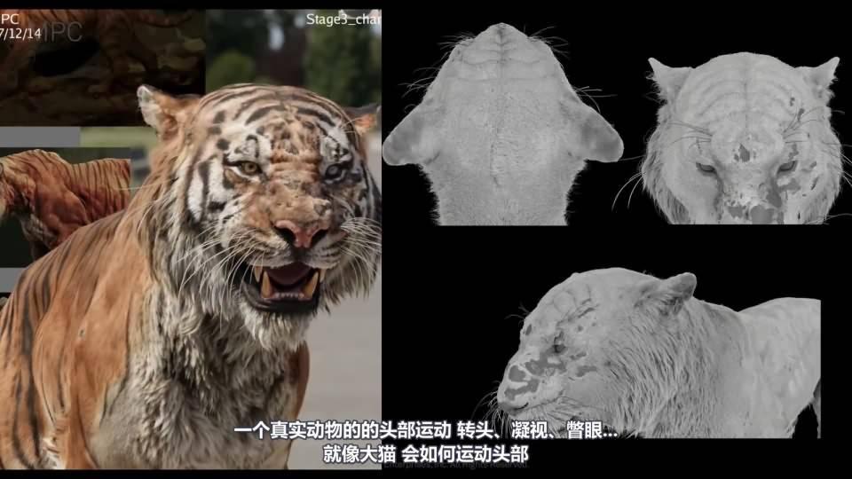 【R站译制】CG&VFX《奇幻森林》MPC幕后创作解析 The Jungle Book 视频教程 免费观看 - R站|学习使我快乐! - 2