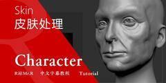 【R站译制】中文字幕 CG&VFX《人物角色宝典》人物角色头部皮肤处理解析 视频教程 免费观看
